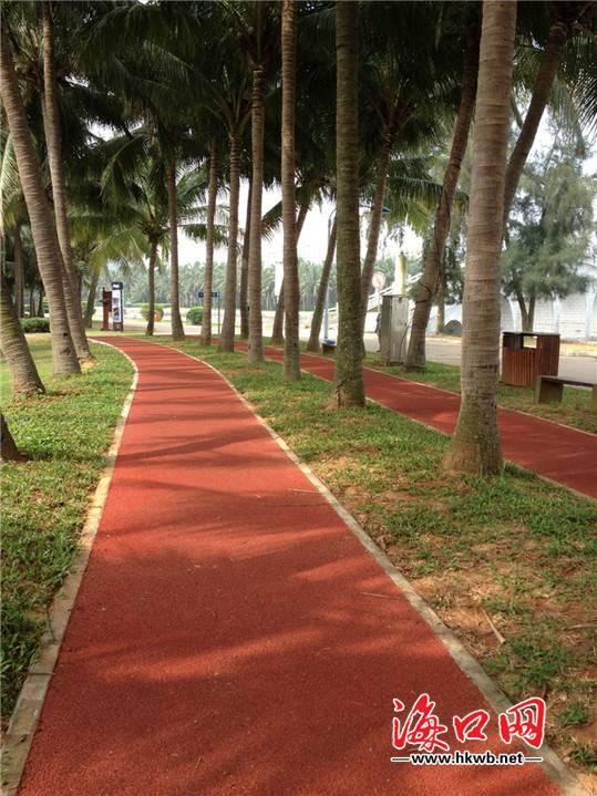 海口万绿园塑胶跑道已正式投入使用