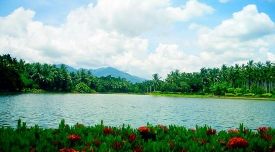 兴隆热带植物园    这里东临南海、三面环山,日照充足、长夏无冬,湿度大、雨量充沛,适宜于热带亚热带植物的生长发育。