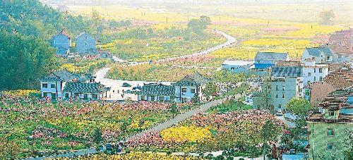 """桐庐县:""""美丽乡村""""创建之旅图片"""