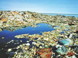 塑料污染 威胁海洋生态环境图片