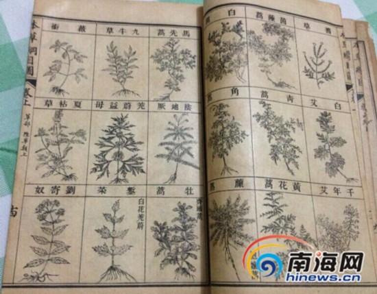 民国十五年上海商务印书馆第八版石印本的《增广本草纲目》。南海网记者陈望 摄