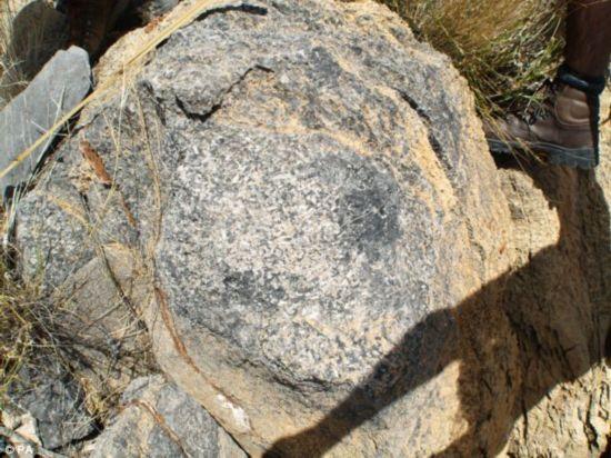 非洲发现最古老动物礁石 可追溯到5.48亿年前