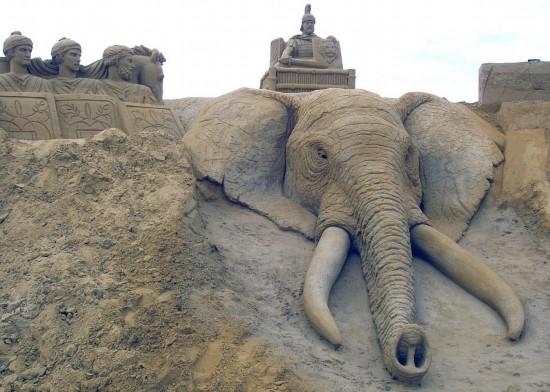 有关海洋动物的沙雕作品