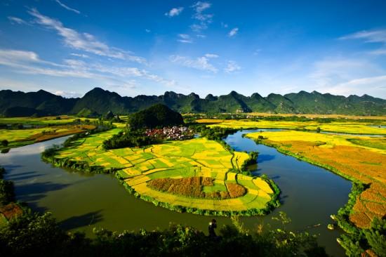世界最漂亮的风景囹�a_壁纸 成片种植 风景 植物 种植基地 桌面 550_366
