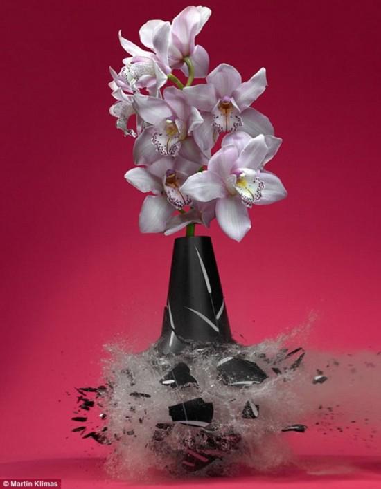 【环球网综合报道】据英国 《每日邮报》 6月24日报道,德国摄影师马丁? 克里马斯(Martin Klimas)使用高速摄影术在其系列照片《花瓶》中探索拍摄瞬间破碎之美,引起了很大反响。Martin用钢珠以极快的速度射穿花瓶,在花瓶破碎的一刹那捕捉到那个瞬间。
