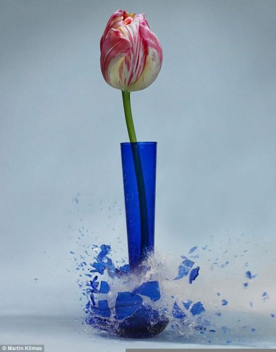 德摄影师用高速摄影术抓拍花瓶破碎之美
