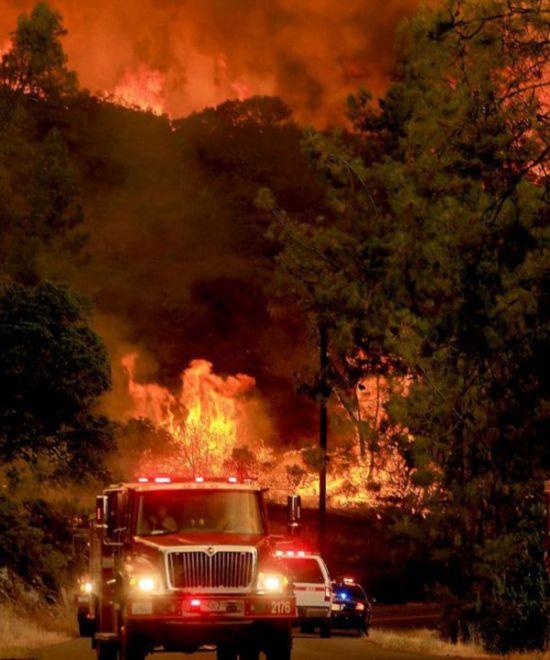 美国加州突发森林大火 千余消防员出动【组图】【5】