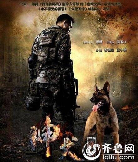 神犬奇兵电视剧全集演员表1-38集大结局分集剧