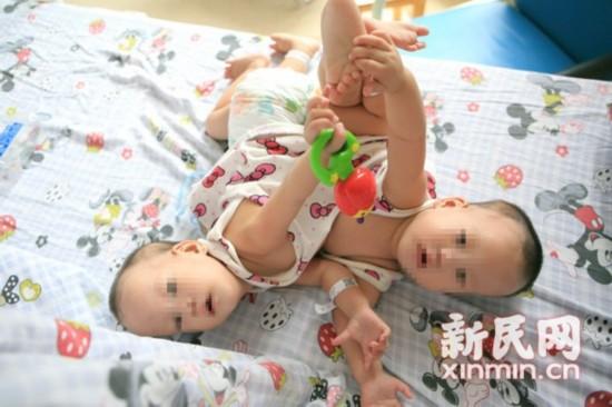 薇将在上海儿童
