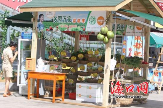 """海口无人菜摊升级成""""小木屋""""摊位增至12个"""