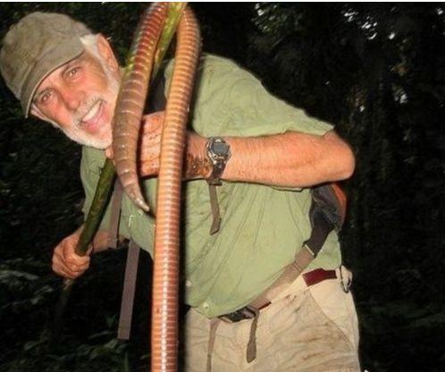 尔现1.5米长巨型蚯蚓 相传在恐龙时代就有