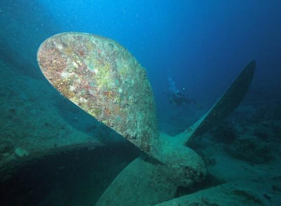 英二战沉船仍保留大量珍贵军用车辆【高清大图】【4】
