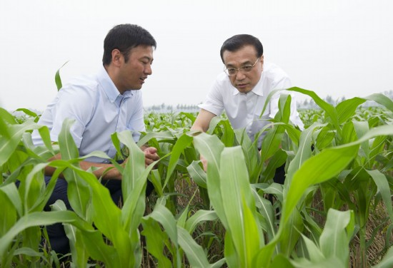 李克强与农民细算收益 赞现代农业造福三方
