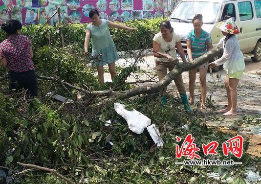 受台风影响严重的幼儿园在开展自救