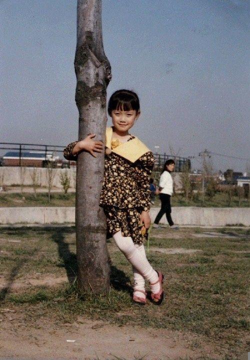 李娜英金泰熙宋慧乔 罕见的韩国天然美女明星