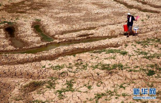 考古发现:距今约3700年河西走廊气候由湿润变为干旱