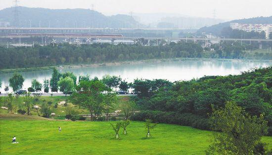 羊山湖景区成南京又一片原生态森林公园