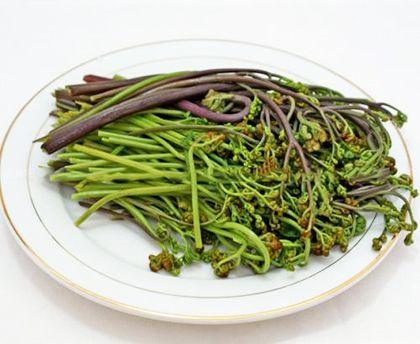 蕨菜有安神作用