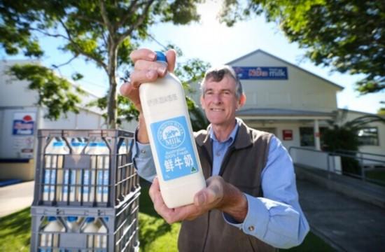 南澳大利亚奶农期待打通对华鲜奶出口通道