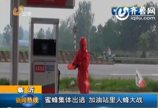 消防人员到达现场后立即穿上防蜂服,使用驱虫药物,对蜜蜂进行驱赶。(视频截图)