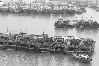 灾后重建渔民需资金 临高2.36亿油补睡大觉