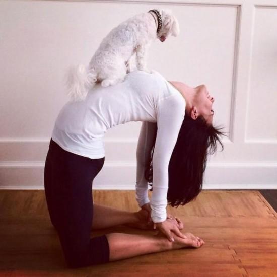 美女子網曬多張自己瑜伽美照驚呆網友【3】圖片