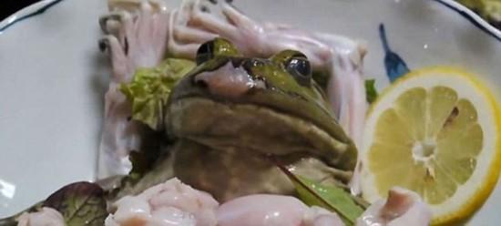 日本寿司店推出活剥牛蛙刺身引众怒,被批虐待动物。