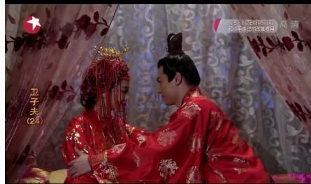 卫青和平阳公主_大汉贤后卫子夫23集在线 公主新婚夜新郎不是卫青【2】