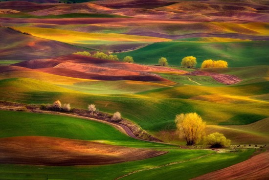 摄影师拍美国广袤草原美若仙境
