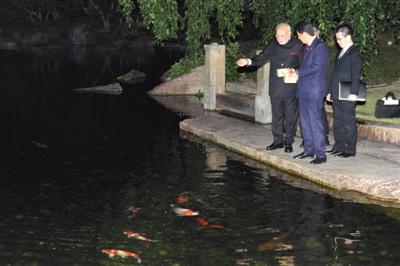 """印度总理首次出访日本""""武器买卖""""能否谈成?"""
