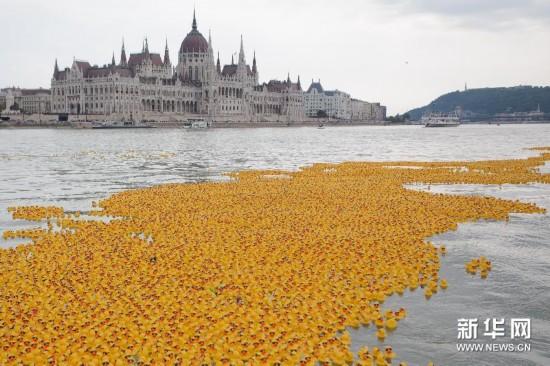 """布达佩斯的""""黄色""""多瑙河"""