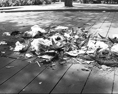 """垃圾随地丢 海口西秀海滩很""""受伤"""""""