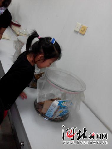 9月12日,石家庄市疾控中心举办了首个公众开放日活动,图为一位小朋友在参观生物标本。
