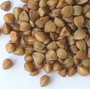 长寿养生:白菜大蒜 最不起眼的6大长寿食物