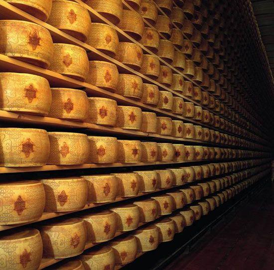 美味上的舌尖梦奶酪吉派食谱美食大搜罗【5】图修如何工厂图片