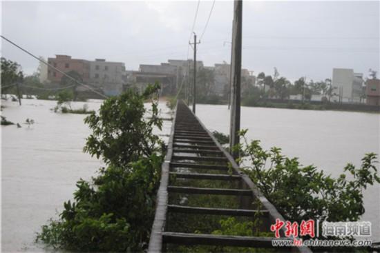海口临近南渡江边的村庄遭洪水围村。 王辛莉 摄