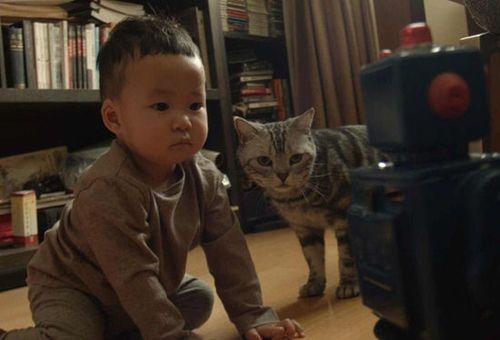 姚晨曝儿子家居照 与猫咪呆萌表情神同步