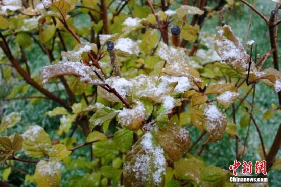 强冷空气入侵新疆多地降雪 市民冬装出行