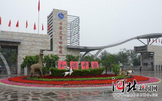"""石家庄动物园门前广场""""和谐中国""""主题花坛."""