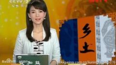 王莉鑫谢颖颖欧阳智薇 盘点央视冷门女主播