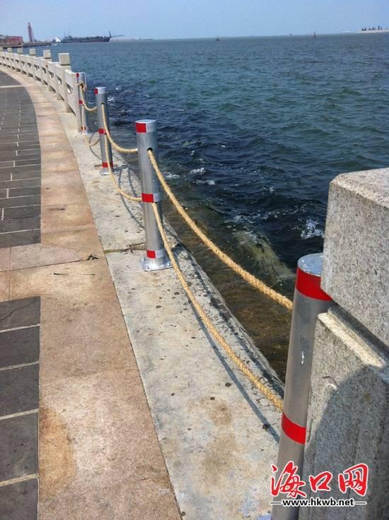 海口湾护栏遭台风损毁 麻绳临时护栏存隐患