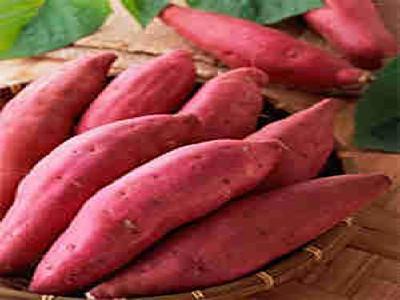 饮食警惕:吃红薯可导致四种危害