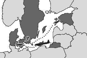 北约拦截俄罗斯侦察机