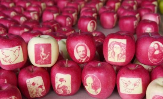 准备寄给法国总统的苹果(网页截图)