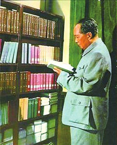 毛主席爱读书的故事感受4篇