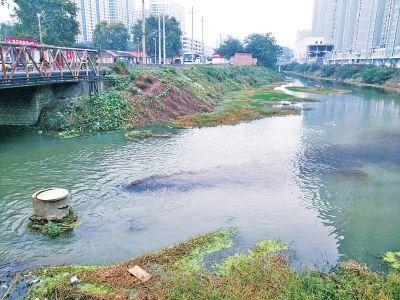 河南首次公布城市河流水质排名  南阳梅溪河最浑