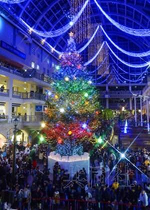 日本巨型圣诞树亮灯数万灯泡齐亮宛如梦境(图)
