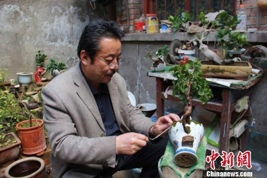 图为何文华修改废旧瓷瓶,创作盆景。郑兵 摄