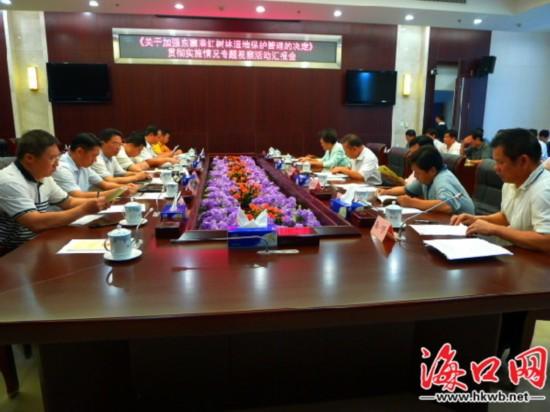陈宏芬:保护好东寨港红树林 使它造福百姓