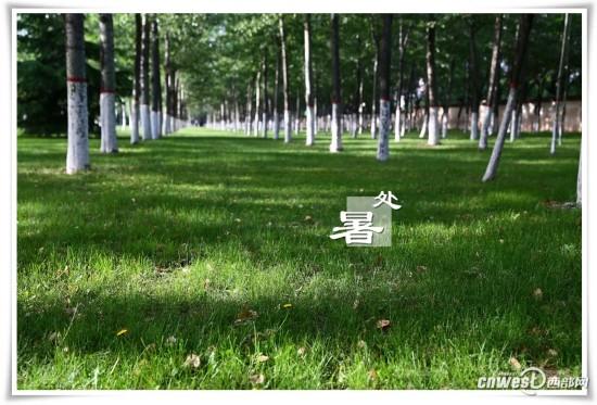高清:图说西安邮电大学24节气校园风光